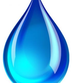 Watergedragen lakken/Les peintures à base d'eau